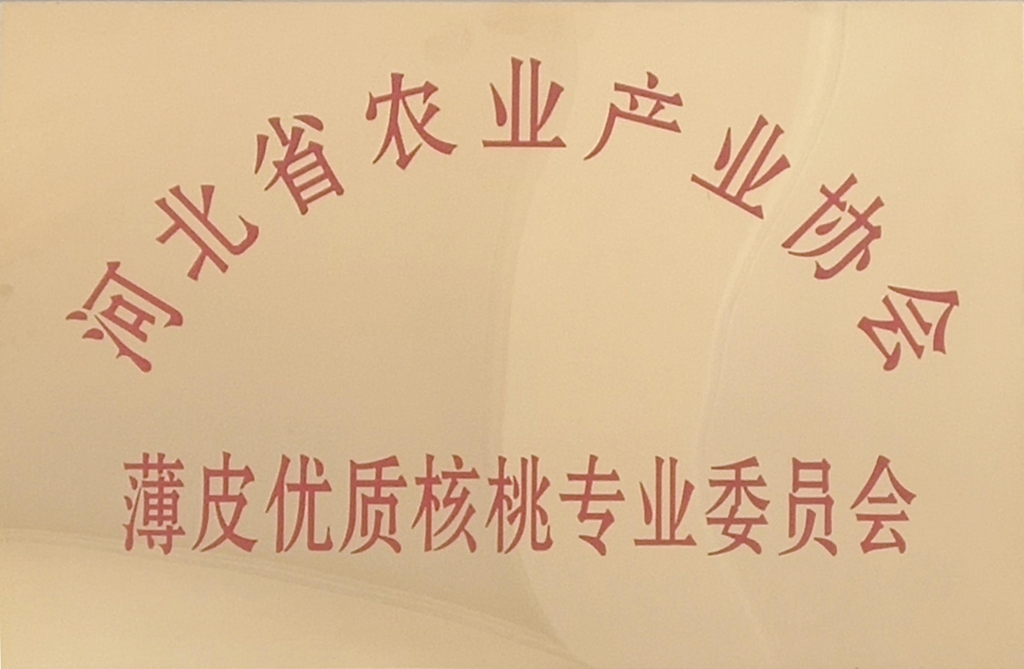 薄皮优质核桃专业委员会(河北省农业产业协会)